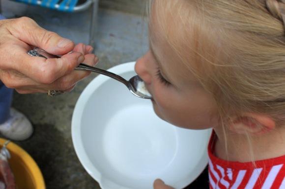 6 taste of homemade vanilla ice cream