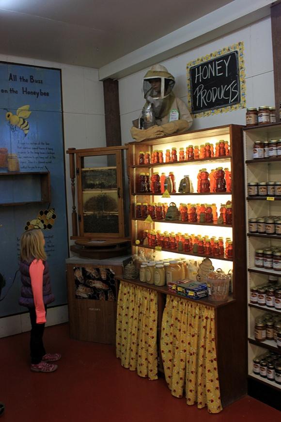 7 stuckey farm honey bees