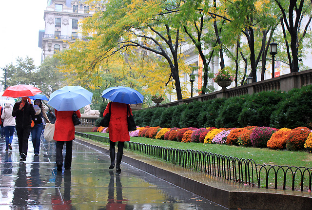 1 nyc october rain public library mums