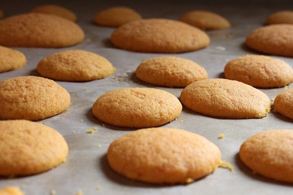 carrot cookies 062 cooling