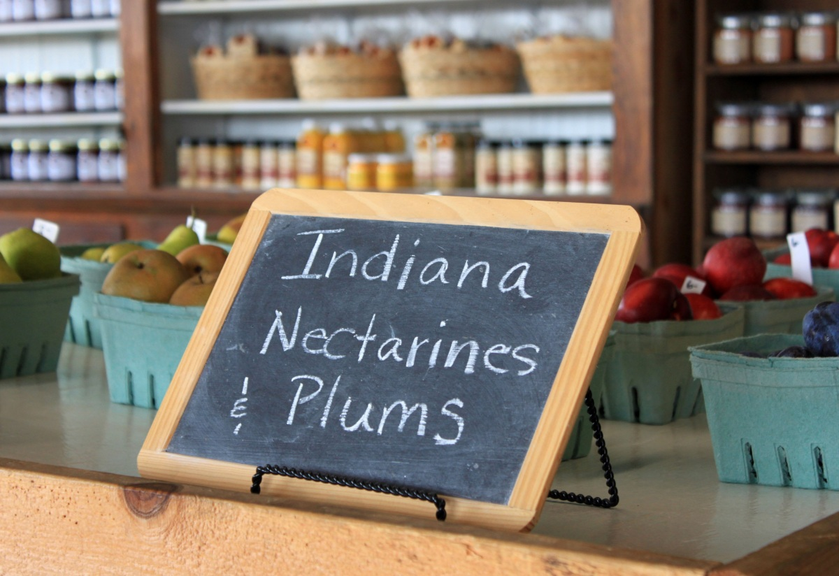 6 Pleasant View Indiana Nectarines